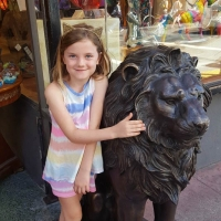 Fun with the Lion